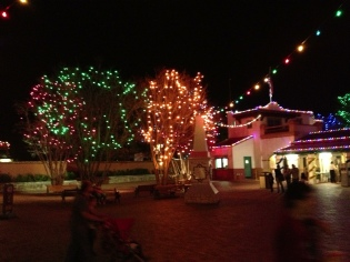 Six Flags at Christmas!