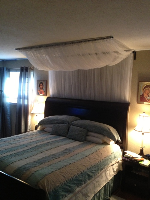 My wife thought our bed needed a canopy.