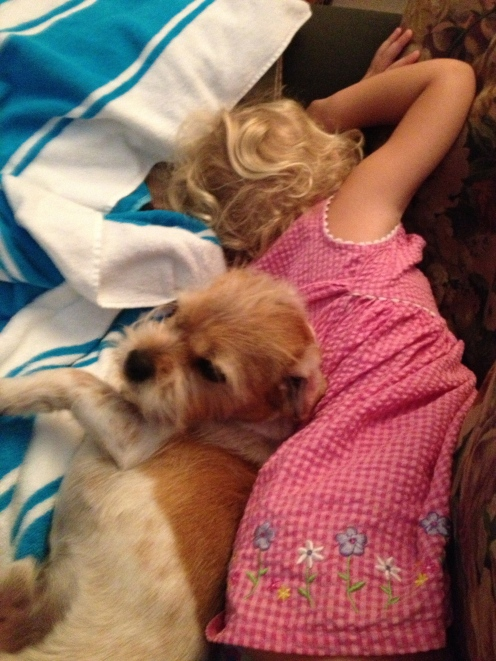 After a trip to the library and the chiropractor, baby girl fell asleep (next to Granny's Jack Russell Terrier).