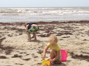 Playing in the sand (with an abundance of seaweed).